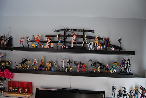 Shelf Shot 2