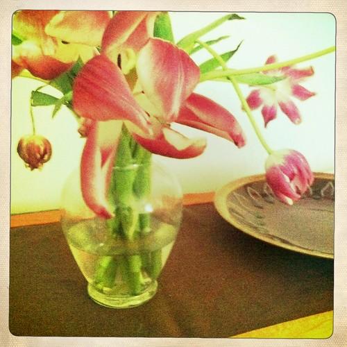Dead Tulips 2