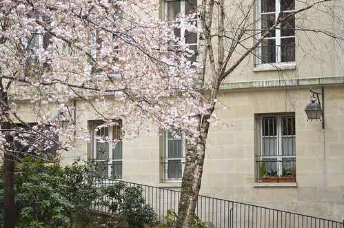 Spring comes to Paris