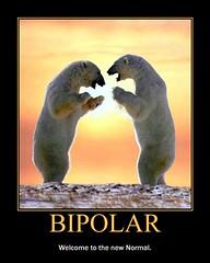 d bipolar normal (dmixo6) Tags: motivator motivation demotivator dugg dmixo6