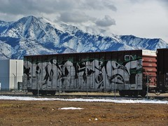 Photo from jaroh (CAPITAL Q SDK) Tags: art train graffiti big stickers boxcar miles railfan sdk wholecar fr8 ephin killas stompdown