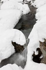 Snow Change Creek | © 2011 Peter Black (peterblackimages) Tags: morning winter us washington unitedstatesofamerica northamerica kingcounty northbend westernwashington changecreek olalliestatepark snoqualmiemountbakerwilderness