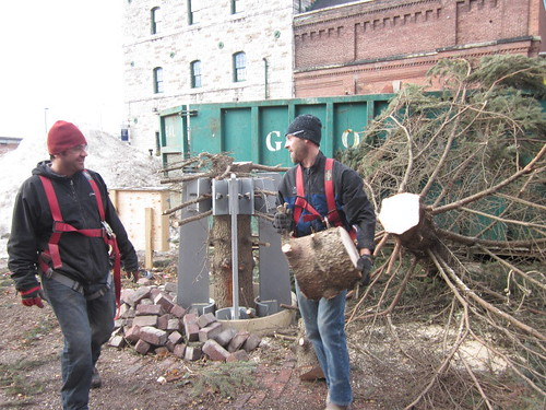 The tourist attraction is finally taking down the christmas tree in the distillery district