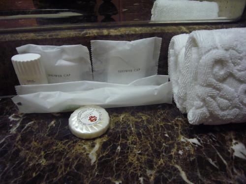20110225花博假期之王朝大酒店