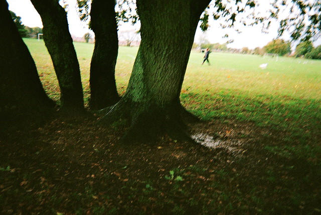 Photo11_11A