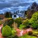 Gardens by Billy McDonald