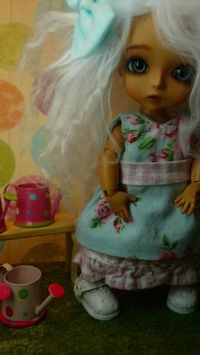 Loofthewood : Lati family : Arya (Lati Yellow Haru tan) circus -  pg14 5506124707_49357ab32e