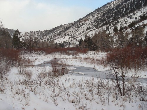 Cimarron River Snowing