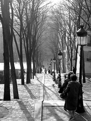 Montmartre Avenue of Steps - Paris (Gilli8888) Tags: paris montmartre france steps trees avenue blackandwhite stairs lamps stairway streetlights streetlamps europe light shade shadow monochrome