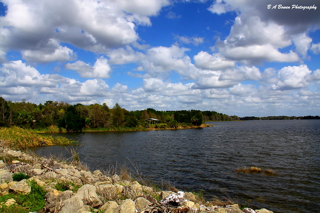 5513991502 e40db972a9 z Hiking Inglis Island offers spectacular views of Lake Rousseau and great birding!