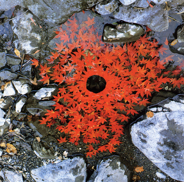 Nature Sculpture by Andy Goldsworthy