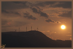 Emission of Ecological Distress Signal !!!!!!!!!!!!! (Emil9497 Photography & Art) Tags: ecology message ecological d90 nikond90 doublyniceshot mygearandme emil9497 emilathanasiou ecologicalmessage