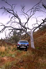 2011 Toyota FJ40 Cruiser - First Drive (NRMA New Cars) Tags: cars offroad 4x4 images toyota suv landcruiser trd newcars motoring offroader fjcruiser carphoto motorvehicle roadtest carreviews carsguide cattest worldcars offroadimages fj40cruiser nrmadriversseat wwwmynrmacomaumotoring 2011toyotafj40cruiser nrmanewcars