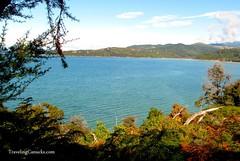 Abel Tasman National Park, South Island New Zealand (camwears) Tags: newzealand nature hiking nelson southisland abeltasmannationalpark