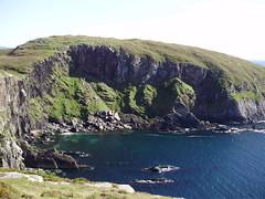 Bird Island Bay