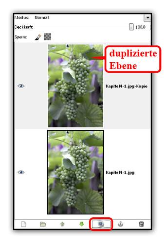 Ebenen duplizieren in GIMP