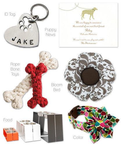 Supplies We Love for Dogs