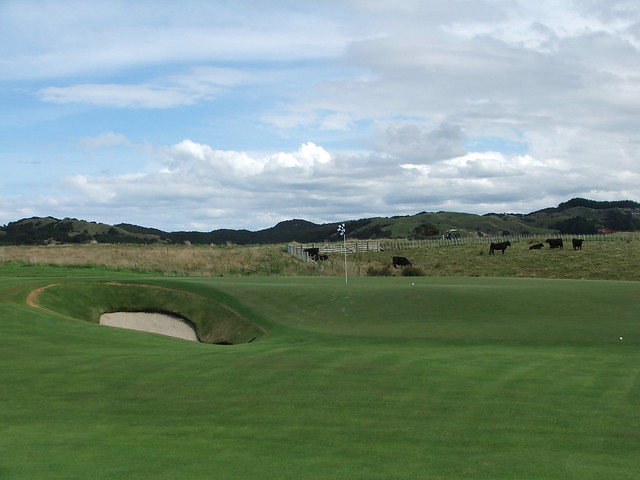 cape kidnappers 14 green
