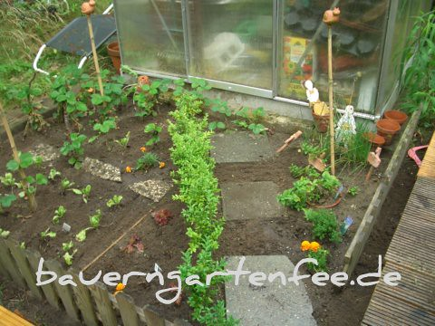 Gemüsegarten Juli 2008