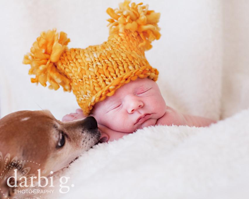 DarbiGPhotography-Kansas City newborn photographer-031511-MY-109