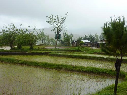 Negros -Bacolod-Savador-San Carlos (69)