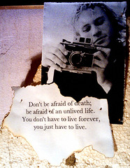 Don't be afraid. (laurw) Tags: live quotes heathledger