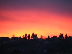 pink sunset (Reka B) Tags: pink sunset beautiful rose photography flickr colours fujifilm reka zalaegerszeg borocz