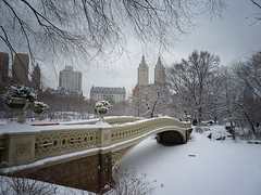 Bow Bridge in the Snow - Central Park - Winter - New York City (Vivienne Gucwa) Tags: city nyc newyorkcity winter urban snow ny newyork nature landscape lumix centralpark manhattan urbanexploration gothamist snowfall curbed winterwonderland snowscape bowbridge winterlandscape urbanphotography uppermanhattan wnyc panasoniclumix nycphoto snownyc winternyc cityphoto cityphotography centralparknewyorkcity newyorkphoto nycphotography winternewyorkcity snowstormnyc wintercentralpark snowcentralpark lumixfz35 snowstormnewyorkcity viviennegucwa viviennegucwaphotography january262011snowstormnyc