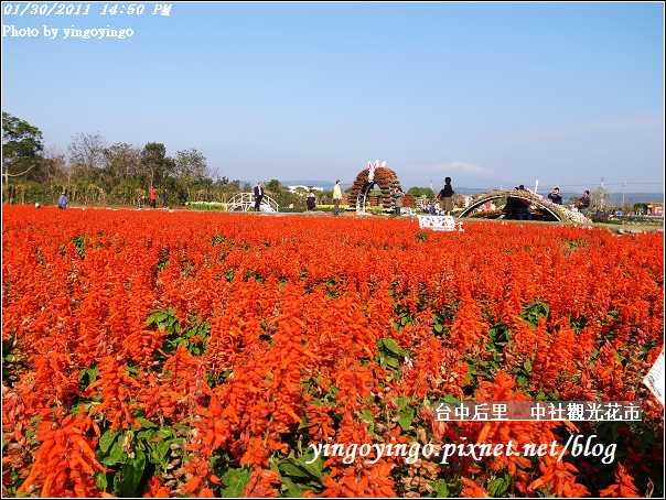 台中后里_中社光觀花市20110130_R0017636