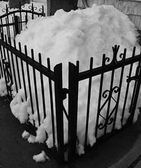 snow lump