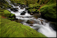 Heaven on Earth... (TLPhotography66 ~) Tags: longexposure shadow green nature water oregon creek river waterfall moss nikon rocks shadows falls serenity columbiarivergorge snowmelt d60 bolders movementmotion starvationcreek platinumheartaward tlphotography