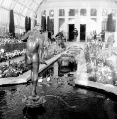 Girl of the Fountain (paulwjohnson) Tags: flowers sculpture water fountain conservatory yashicamat124g arista