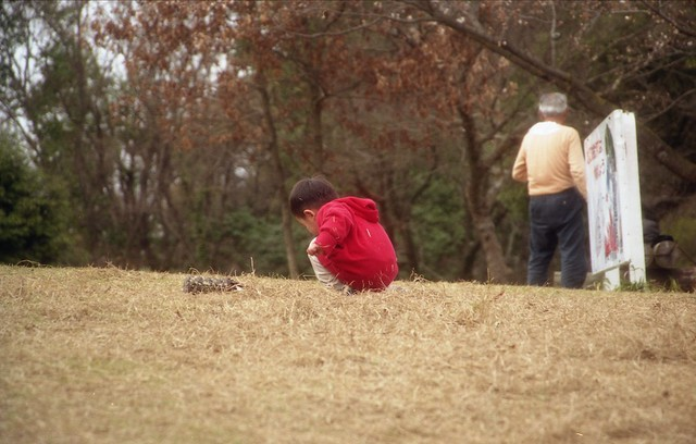 芝生の子供のフリー写真素材