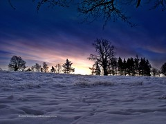 Crutherland Sunrise2 (baird2010) Tags: winter scotland snowscene eastkilbride crutherlandhotel