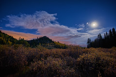 Riparian  Moonrise (Fort Photo) Tags: travel moon mountains fall nature forest skyscape landscape nikon colorado nightscape meadow moonlit moonrise co moonlight hdr moonscape teller riparian nikon1735 d700 snshdr
