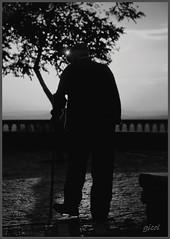 old man with a stick (gicol) Tags: old light españa sun man luz spain solitude loneliness camino wine country laguardia stick lonely sole viejo rioja basque cantina vasco bodegas comunidad luce spagna andando vino vecchio tinto solitudine álava autónoma anziano país bastone cammina