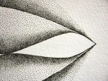 Dessin à l'encre au point inspirée d'un pétale de dimension 36x48cm. Les formes évoluent en s'ouvrant en suivant une ligne courbe vers la droite – Sandrine Vallée