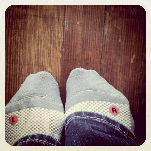 . picky socks .