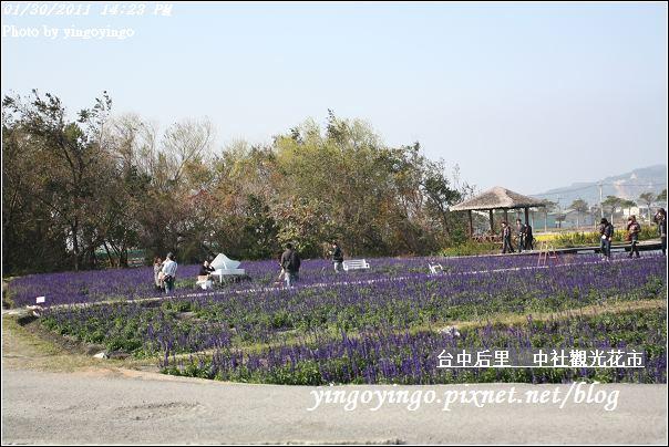 台中后里_中社光觀花市20110130_I6201