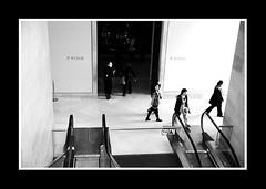 PARIS FEVRIER 2011-8178 (David Bascunana) Tags: paris cadenas palaisdejustice metro crane louvre pigeon alma pigeons coeur os muse notredame pont metropolitain arcdetriomphe sdf panam escalier greve gargouille mairie parvis pontneuf manifestation ilestlouis rer clochard chatelet catacombes bateaumouche marceau pontdesarts tapisroulant clodo paname ossements procs sansdomicile champslyse sansdomicilefixe outreau contrepoint ilesaintlouisiledelacit