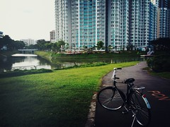 Flying Pigeon, The Rivervista @ Kallang