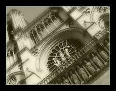 1000 Paris-Notre Dame 1 (Nebojsa Mladjenovic) Tags: light mist paris france art monochrome sepia architecture digital french outdoors lumix frankreich panasonic frankrijk francia francais fz50 svetlost mladjenovic doublyniceshot