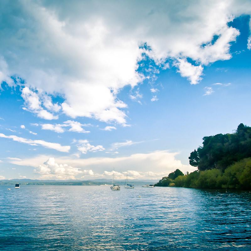 Taupo Landscape