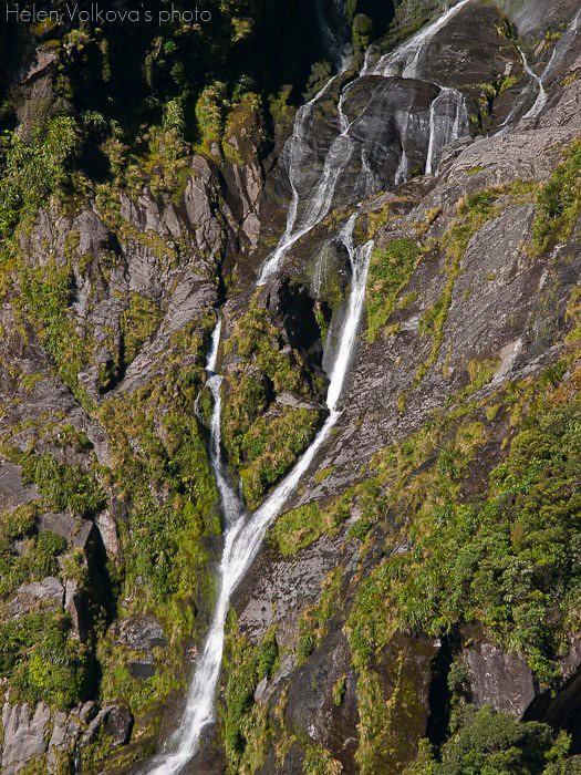 Fiordland-260