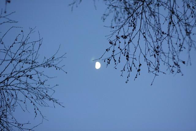 Luna da lassù