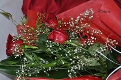 mazzo di rose (Debora Matteis) Tags: red rose rosa rosso mazzo fiorellini bunchofroses