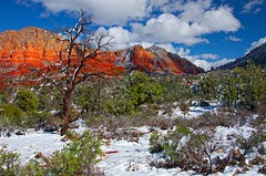 Snowy Red Rock Country (D'ArcyG) Tags: winter red arizona snow mountains southwest landscape rocks sedona redrock