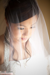 Brides beauty.. (steve_wantania) Tags: wedding portrait brides