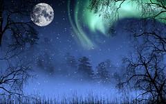 [フリー画像] グラフィックス, フォトアート, 月, オーロラ, 雪, 樹木, 201103071900