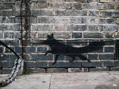 YA Maida Vale fox (Simon Crubellier) Tags: city uk england london westminster canon graffiti stencil europe britain ixus fox maidavale londonist simoncrubellier ixus70